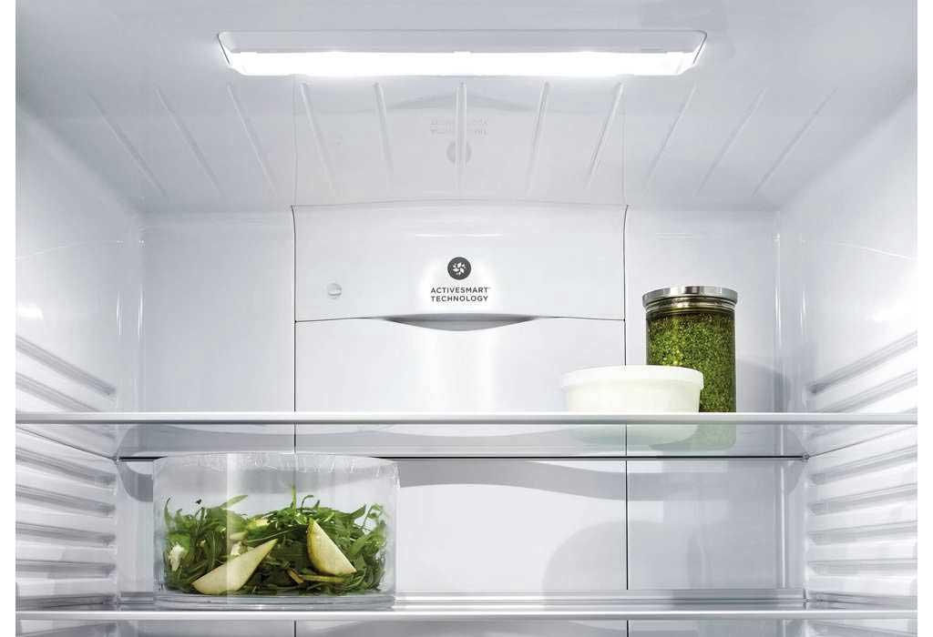 Fisher Amp Paykel Activesmart Fridge 635mm Bottom Freezer