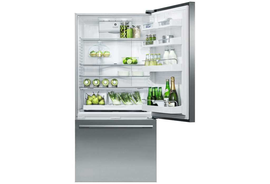 Fisher Paykel 519l Activesmart Bottom Mount Fridge Stainless